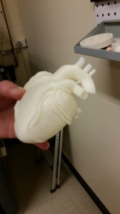 An anatomically-correct 3D printed heart. The applications for medical use are already being seen every day with things custom prosthetics and more